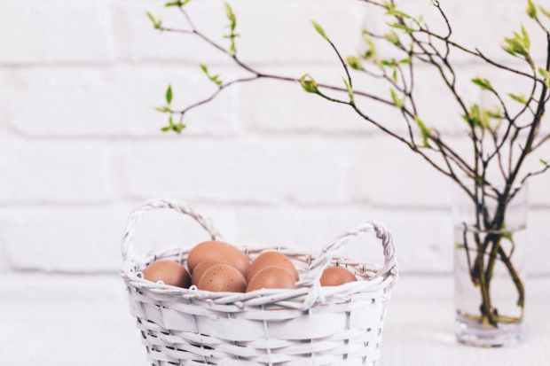 bunch of poultry egg in white wicker basket